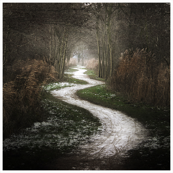The path to a new way of life