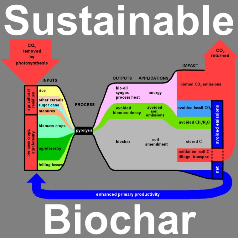 Biochar A Sustainable practice that could save out planet.