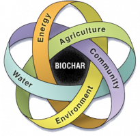 Biochar The Secrets Out