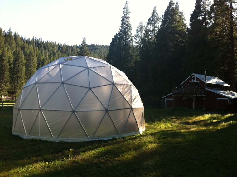 Dome Greenhouses The 24 foot Dome for Gardening year round