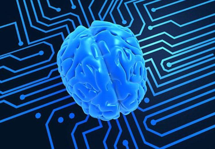 Computer Human Upgrades