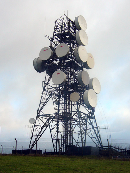 Microwave Effect near Microwave Towers