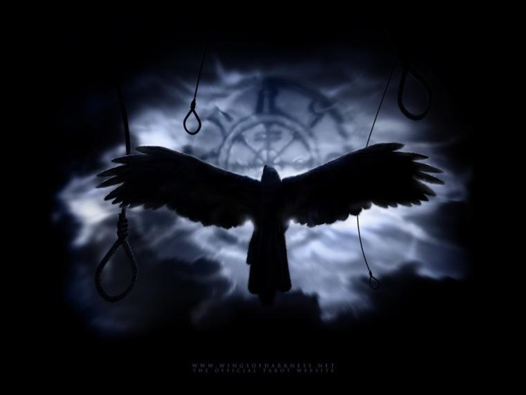 Crow in Night Sky