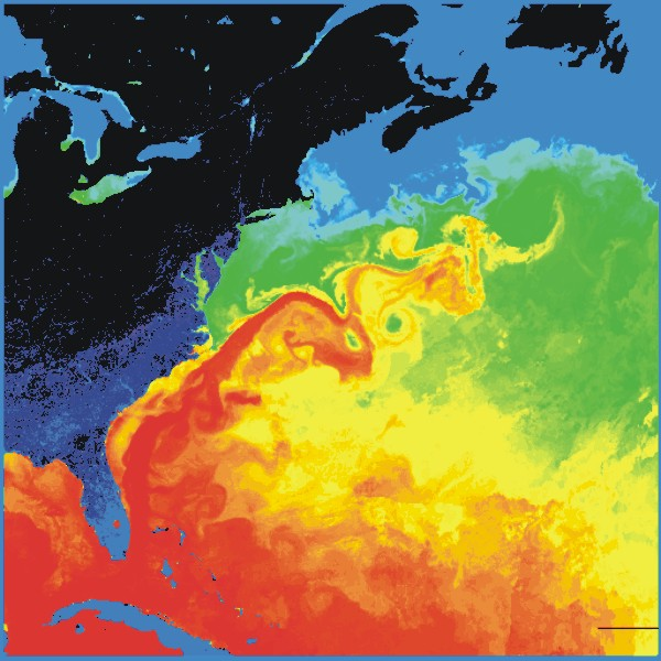 Gulf Stream Today