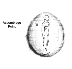 Assemblage Point