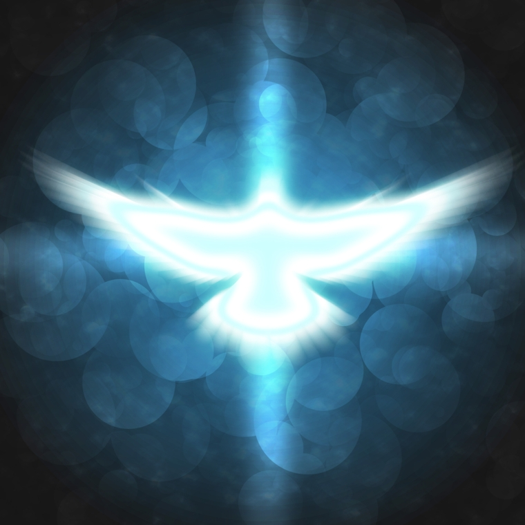 In GOD We Trust Flight in Spirit